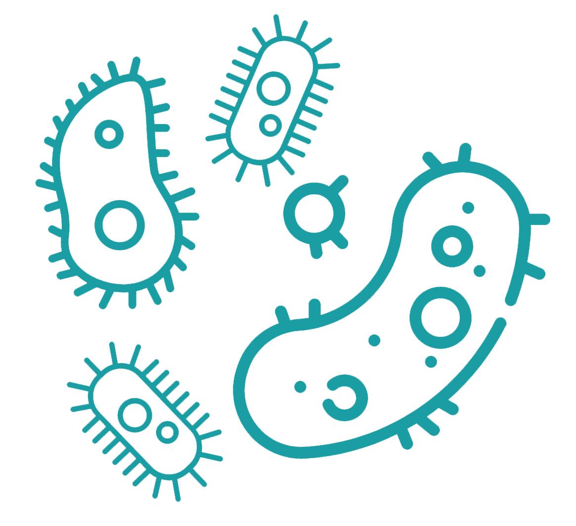 Fiandre Active Antibakteriell Selbstreinigend Geruchsbindend Grafik